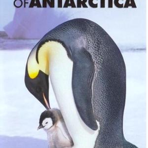 Emperors of Antartica