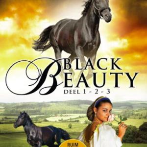 Black beauty box