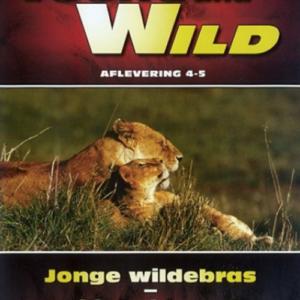 Young & Wild - Wildebras/Veiligheid op de eerste plaats